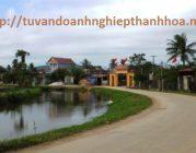 Thành lập công ty tại huyện Nông Cống